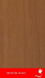 Tik-Ağacı-173x300
